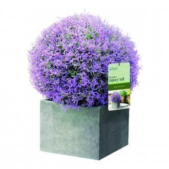 Искуственное растение GARDMAN Topiary Ball лаванда, Великобритания DOMOS 1315.000